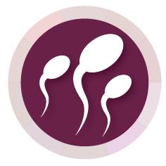Concibe, prevención y fertilidad