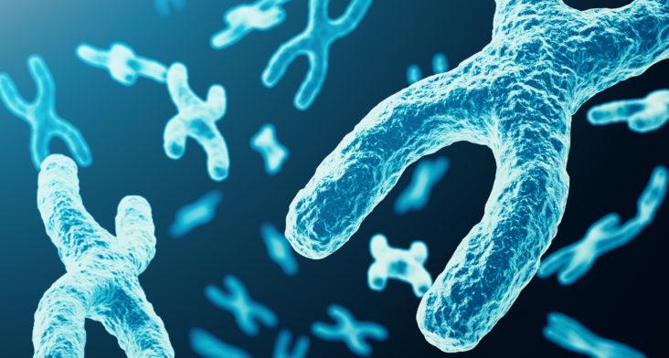 Diagnóstico Genético Preimplantatorio