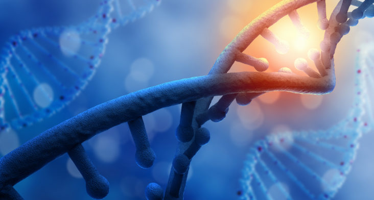 Fragmentación del DNA Espermático