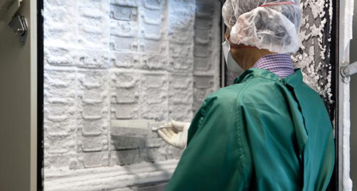 Congelamiento de ovarios da esperanza a miles de mujeres