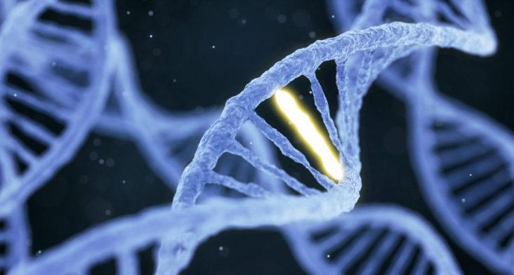 Clínica de fertilización : prevenir enfermedades genéticas