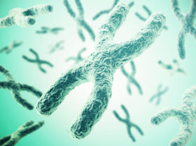 Chromosomes on green background, scientific concept 3d illustration.