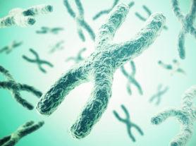 Chromosomes on green background, scientific concept 3d illustration.