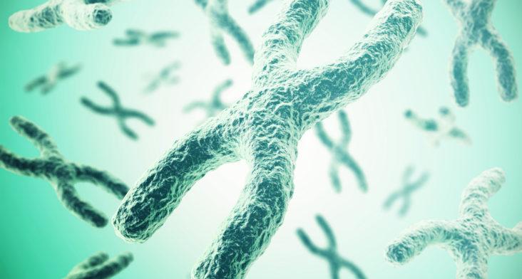 Importancia del cariotipo en tratamientos de reproducción asistida