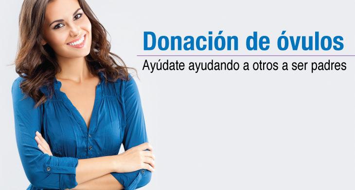 Información para donantes de óvulos